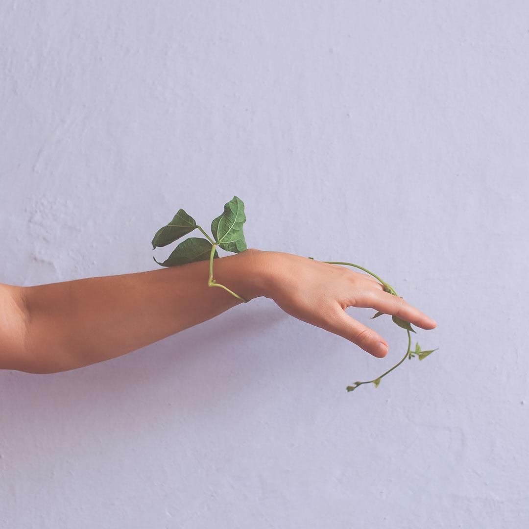 Jak na dłoni